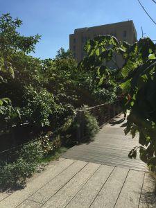 16 High Line