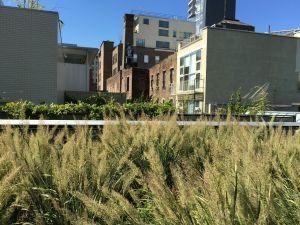 21 High Line